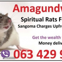 FINANCIAL SOLUTION FOR MONEY SPELL USA